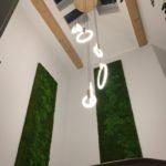 Brandt & Schulz kreative Gestaltung, Moosbild, Hydrokultur Design